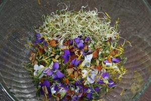 spring salad2_9777