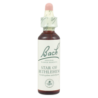 bach_flower_remedy_star_of_bethlehem_20ml